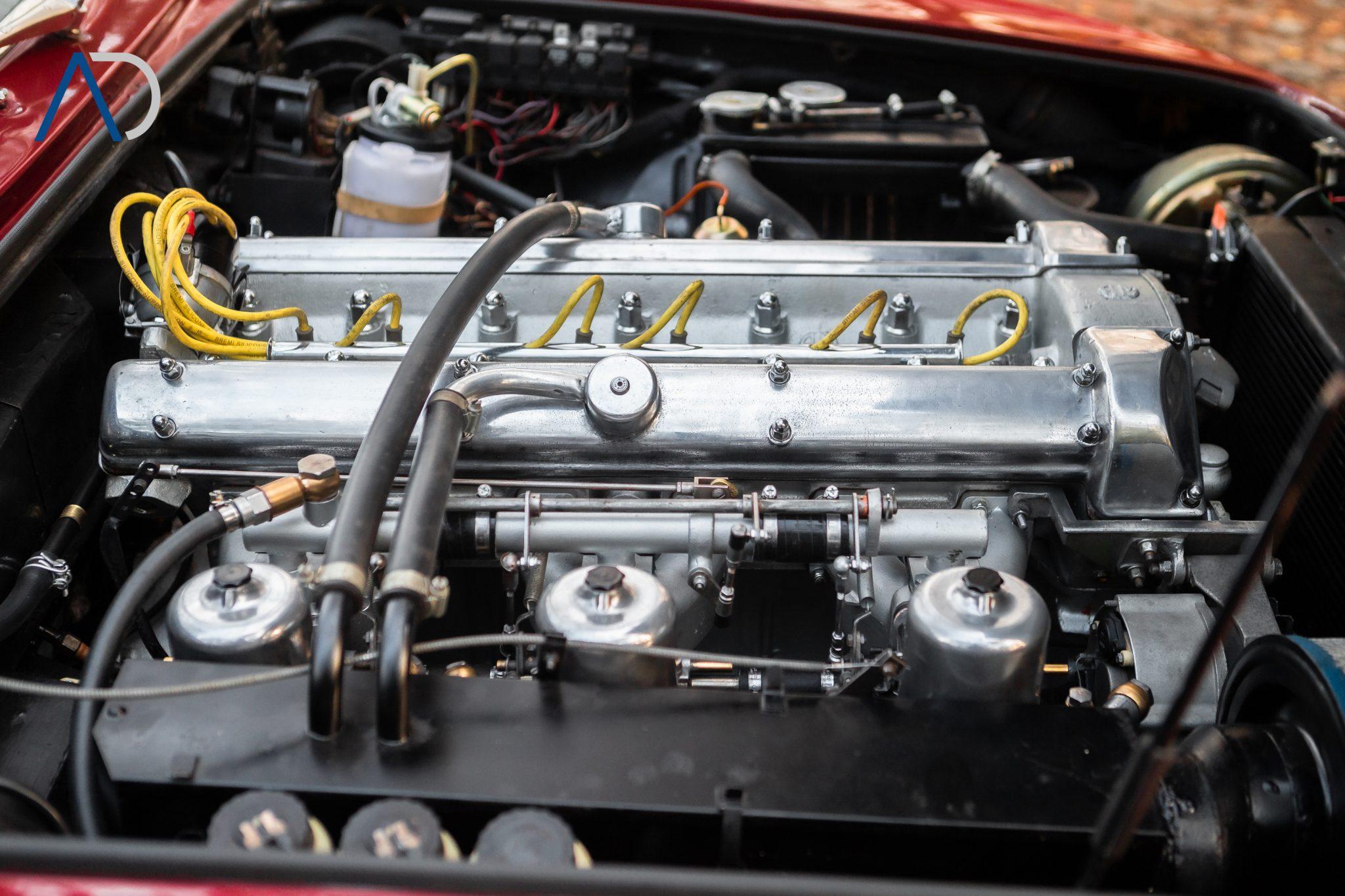 C55P8566